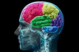 brainjune